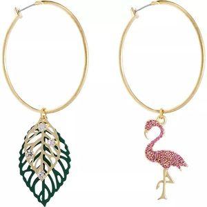 Flamingo and leave🥰